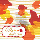Hello autumn square with dot pattern Stock Image