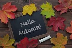 Hello autumn text on chalkboard. Dark wooden background with colorful maple leaves. Fall season. top view stock image