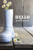 Hello autumn text, daisy and boots on a vintage table, Royalty Free Stock Image
