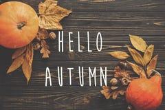 Hello Autumn Text. Hello Fall sign on Pumpkin, autumn vegetables Stock Photos