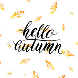Hello autumn text  on orange leaves background Royalty Free Stock Photography