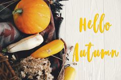 Free Hello Autumn Text, Seasons Greeting Card Concept. Welcome Fall S Royalty Free Stock Photography - 124554477
