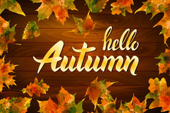 Hello autumn text on wooden background orange leaf vector. Art Stock Photography