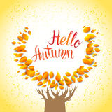 Hello autumn tree. Template for design banner,ticket, leaflet, card, poster and so on Royalty Free Stock Images