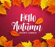 Hello autumn vector background template with autumn typography. And maple leaves in red background for fall season greetings design. Vector illustration Royalty Free Stock Photography