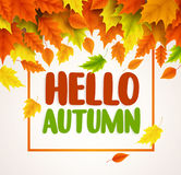 Hello autumn vector banner design. Text greetings for fall season with collections. Of yellow and orange maple leaves falling in white background. Vector Stock Photos