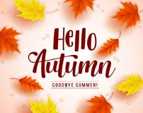 Hello autumn vector greeting design with autumn typography. And colorful fall season maple leaves elements in white background. Vector illustration Stock Illustration