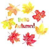 Hello autumn watercolor hand drawn lettering and maple leaves. Hello autumn watercolor hand drawn lettering and fall colored maple leaves Stock Photo