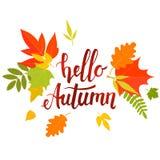 Hello-de herfst het van letters voorzien Stock Fotografie