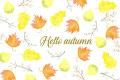 Hello-de herfstkaart met bladeren en takken Stock Foto's