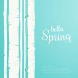 Hello-de lente het van letters voorzien De bosachtergrond van de de lenteberk Royalty-vrije Stock Afbeeldingen