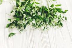 Hello-de lentebeeld mooie kleine witte bloemen met groen Stock Foto's