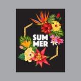 Hello-de Zomer Tropisch Ontwerp met Gouden Kader Tropische HibisÑ  ons Bloemenachtergrond voor Affiche, Verkoopbanner, Aanplakbi stock illustratie