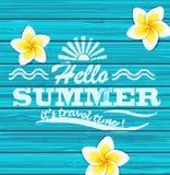 Hello-de zomer Vector Stock Afbeelding