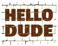 Hello Dude printed on stylized brick wall. Textured humorous inscription for your design. Vector. Illustration royalty free illustration
