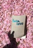 Hello förälskelse arkivfoton