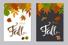 Hello fall autumn posters in a4 format with forest colorful leaves border. And handwritten lettering oon black and white background royalty free illustration