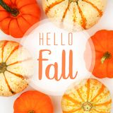 Hello Fall greeting card with frame of pumpkins over white royalty free stock image