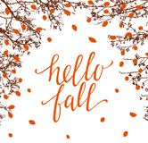 Hello fall. Calligraphy and autumn trees isolated on white Stock Photo