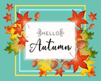 Hello Fall lettering in autumn decorative leaves frame. Banner for Hello Autumn with colorful seasonal fall leaves and acorns for shopping discount promotion stock illustration