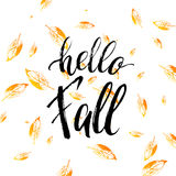 Hello fall text  on orange leaves background Royalty Free Stock Images