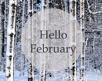 Hello February.Winter forest covered with snow.Snowy trees after a snowfall. Wintertime concept royalty free stock image