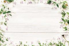 Hello fjädrar framlänges lekmanna- nya tusenskönalilablommor och gröna örter Royaltyfria Bilder
