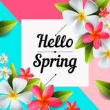 Hello fjädrar textbanret, hälsningar planlägger med färgrika blommabeståndsdelar i färgrik bakgrund för vårsäsong Arkivfoto