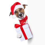 Hello goodbye christmas  dog. Christmas dog as santa behind placard with big present as a gift Royalty Free Stock Photography
