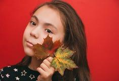 Hello höst, en flicka rymma ljust färgade lönnlöv framsidan på en röd bakgrund royaltyfria foton