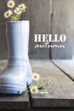 Hello hösttext, tusensköna och kängor på en tappningtabell, Royaltyfri Bild