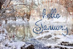 HELLO JANUARY greeting card. Winter holidays concept. Fir branches in the snow. Great season texture with winter mood stock photography