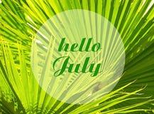 Hello Juli lämnar det välkomnande kortet med text på den naturliga gröna tropiska palmträdet bakgrund Arkivbild
