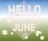 Hello June background Stock Photos