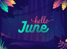 Hello june background. Summer night with crickets. Jungle with plants and stars Royalty Free Stock Images