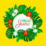 Hello June card. Summer tropic design. Exotic leaves, flowers. simple text. Vector background with round frame. Colored royalty free illustration