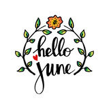 Hello june. Hand lettering calligraphy. Greeting card royalty free illustration