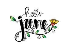 Hello June. Hand lettering, greeting card vector illustration