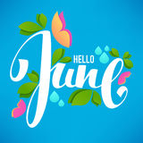 Hello June,. Vector Banner Design Template With Images Of Green Leaves, Bright Butterfly And Lettering Composition royalty free illustration