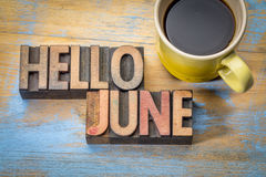 Hello June word abstract in wood type Royalty Free Stock Photography