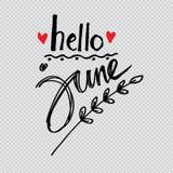 Hello Juni vector illustratie
