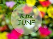Hello Juni Välkomnande kort med text på naturlig suddig blom- bakgrund Sommartidbegrepp Arkivfoton