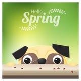Hello-Lentetijdachtergrond met pug hond die lieveheersbeestjes bekijken vector illustratie