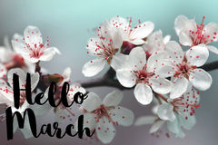 Hello March Royalty Free Stock Images