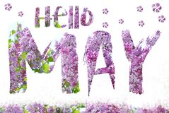 Hello May background