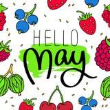 Hello, may. Fashionable calligraphy. Royalty Free Stock Image