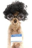 Hello Mijn Naam is… Sticker op Nerd Stock Foto's