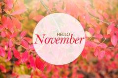 Hello November banner Stock Image