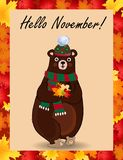 Hello november poster with cute bear in hat and scarf holding fallen leaves Royalty Free Illustration