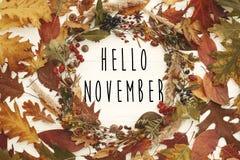 Hello November text på den lekmanna- höstkranslägenheten Nedgångsidor i ci royaltyfria foton